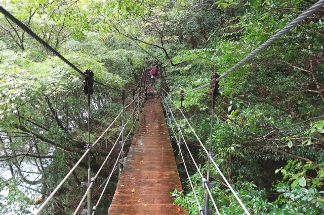 大杉谷渓谷進むと吊橋