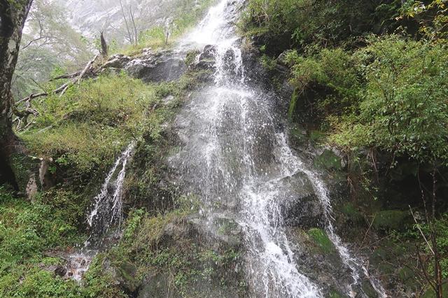 登山道の脇から大量の水が湧き出し