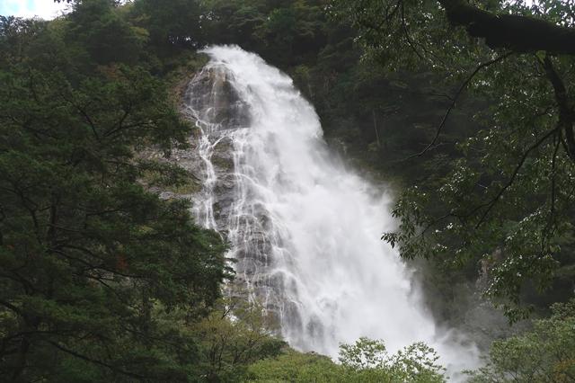 大杉谷渓谷から桃ノ木山の家途中の滝