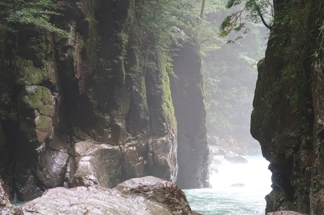 奥のほうにニコニコ滝