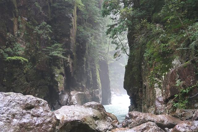 ニコニコ滝大杉谷の雰囲気