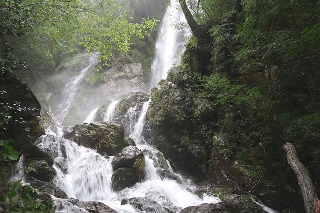 大杉谷らしい景色