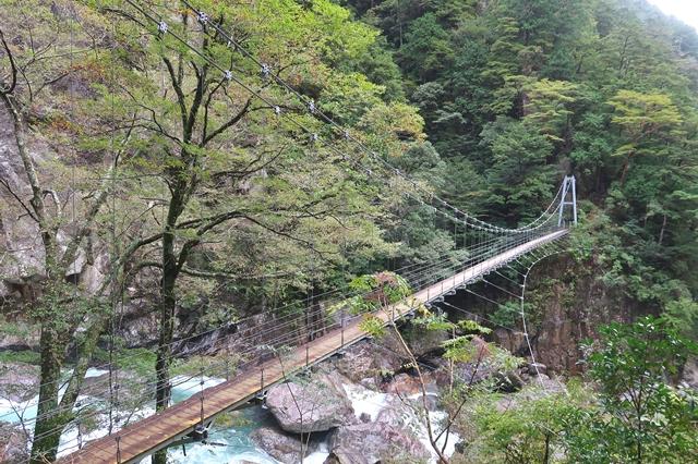 桃ノ木山の家までのルート上の吊橋