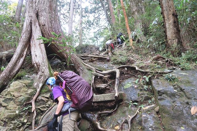 粟谷小屋・堂倉避難小屋までひたすら樹林帯の急登