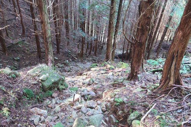 俱留尊山から滝川道で下山