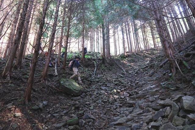 俱留尊山から滝川道は道が荒れている