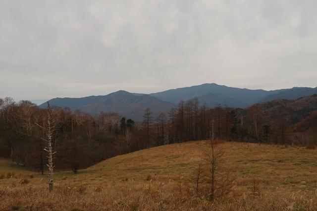 小さな分水嶺からの景色
