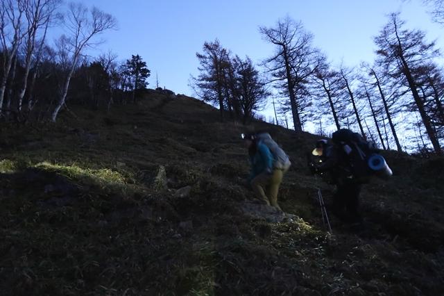 笠取山の頂上を目指して登っている登山者