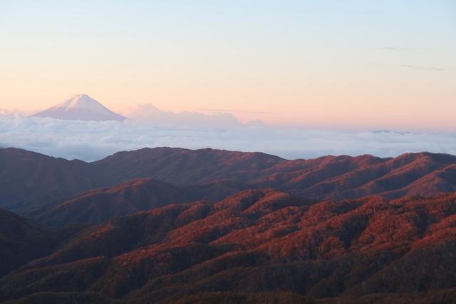朝焼けに染まる奥秩父の森と富士山