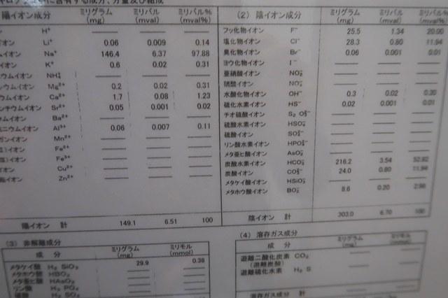 温泉分析票の詳細
