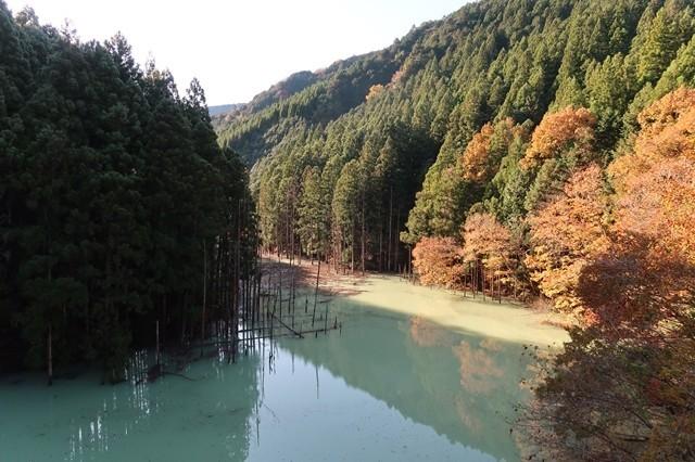 宮ヶ瀬湖の美しさ