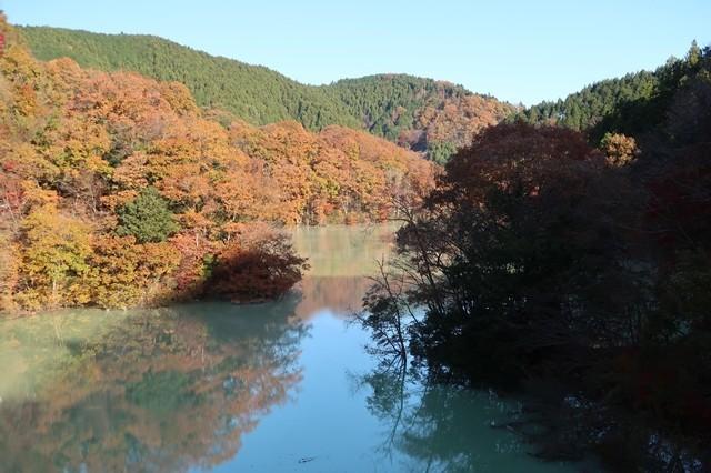 宮ヶ瀬湖畔の紅葉栂立尾根の入口周辺