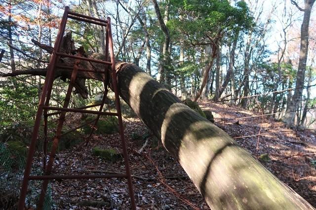 梯子の先に目指す栂立ノ頭