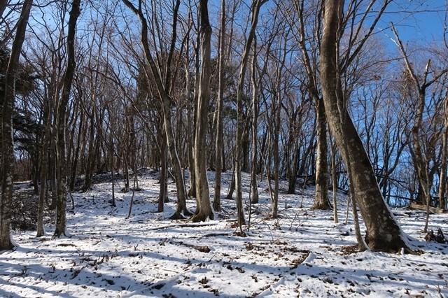 栂立尾根の雪景色