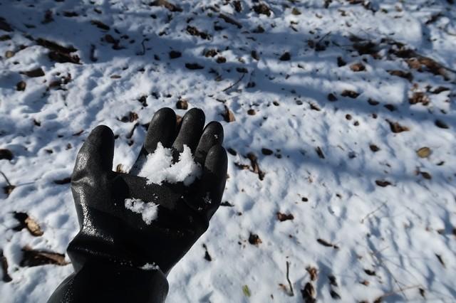 テムレスブラックで雪を持っている