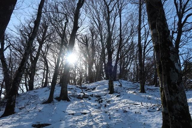 積雪期の丹沢三峰も雰囲気