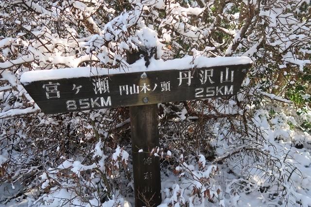 円山木ノ頭周辺も積雪が多い