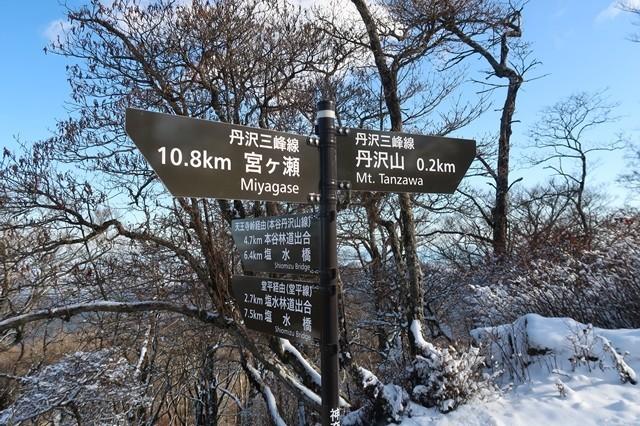 >塩水橋から堂平を経由して蛭ヶ岳