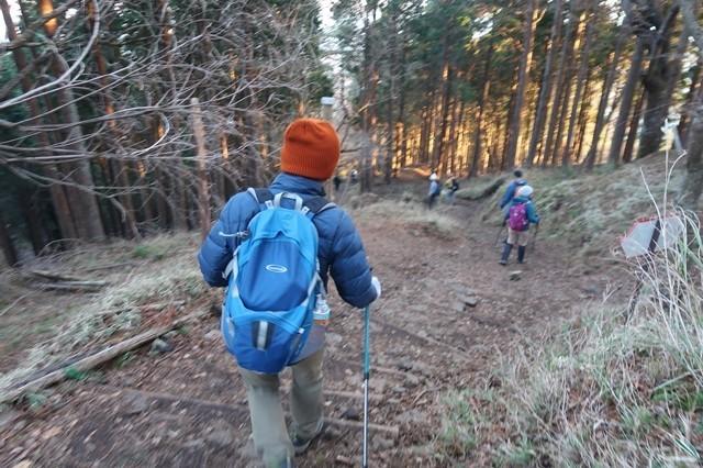 大倉尾根で一緒に下山した登山者