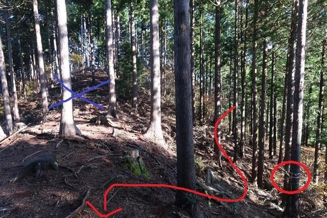 栂立尾根を逆から(タロベエ峰)来る場合マーキング