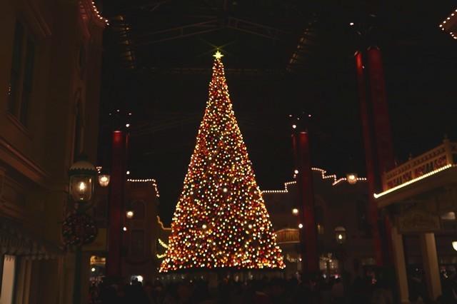 夜のクリスマスツリーの様子