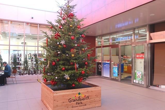 南町田グランベリーパーク大きなクリスマスツリー