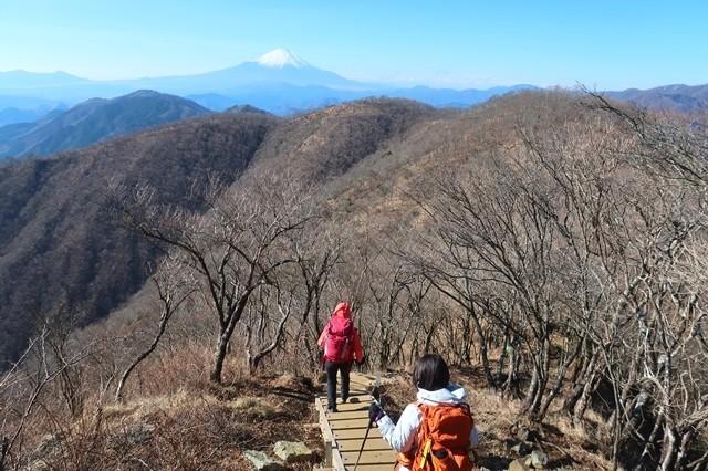 鍋割山稜歩き