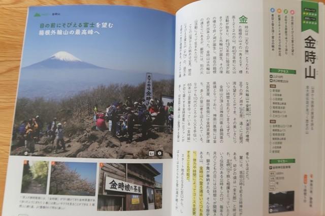 ヤマレコの人気ルート金時山