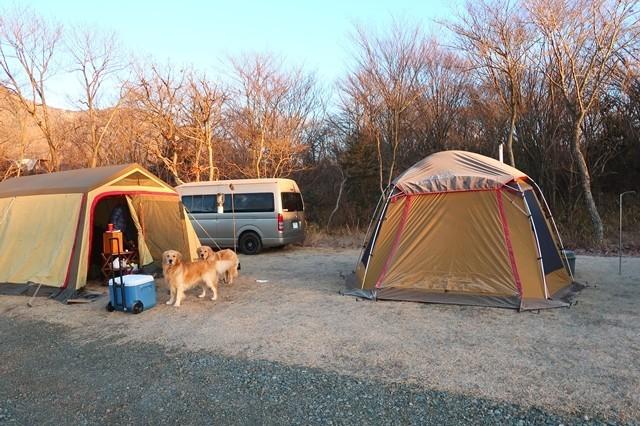 色々なテントが乱立