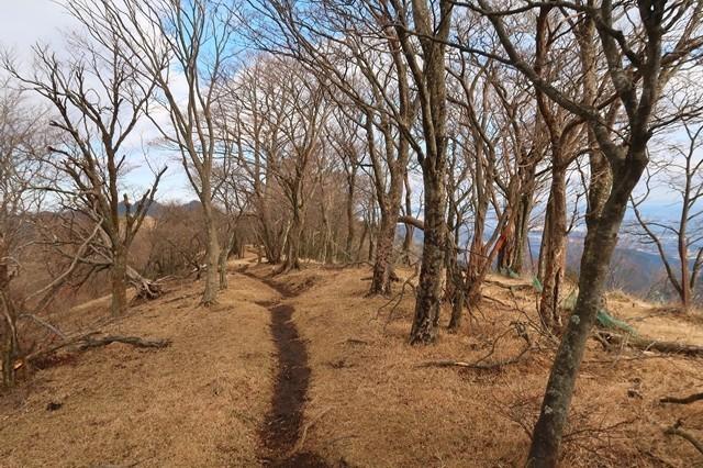 大山三峰山へのルート雰囲気