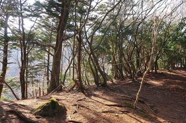 大山三峰山への登山ルート