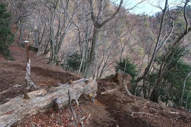 不動尻からの一般登山道と合流