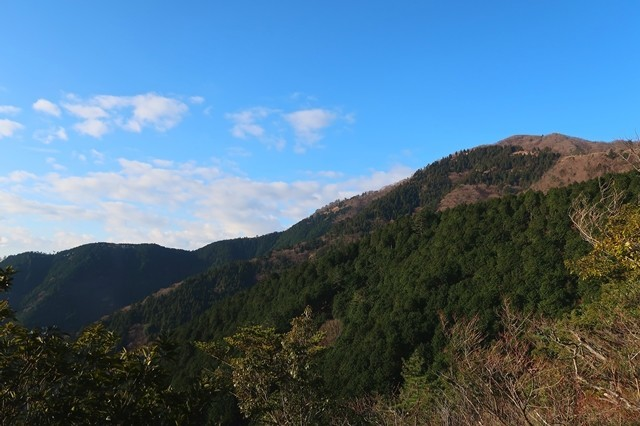 梅ノ木尾根から大山の景色遠望