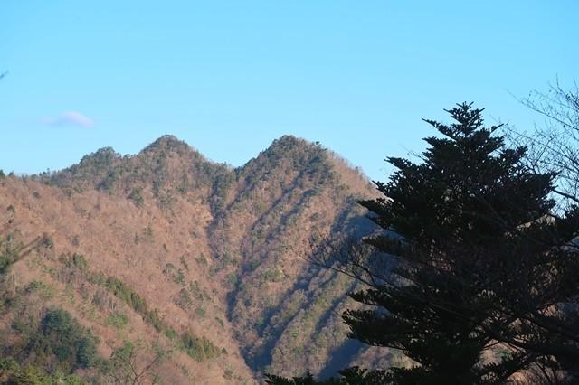 梅ノ木尾根から見る大山三峰遠望