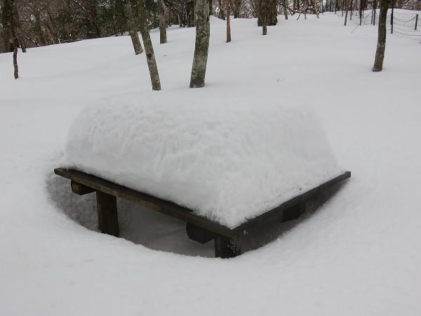 アウトドア座布団マットがないと休憩諦めてしまう雪の量