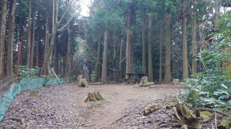 鐘ヶ岳山頂周囲は樹林に囲まれ展望はありません