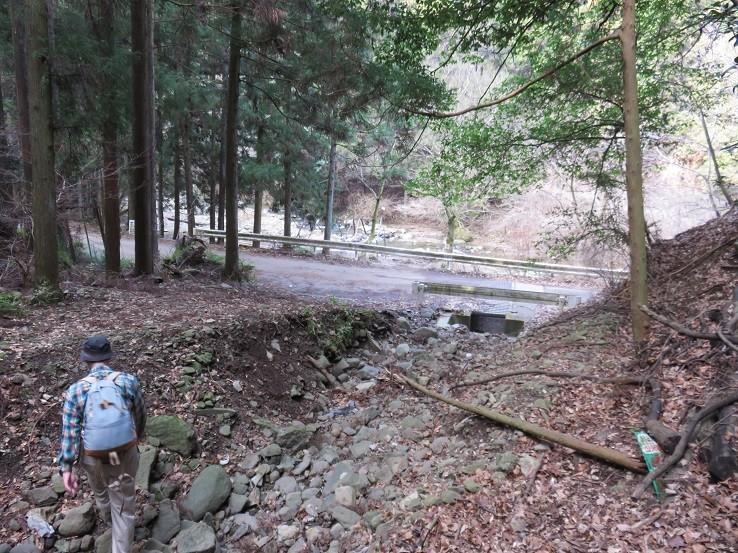谷太郎川の林道
