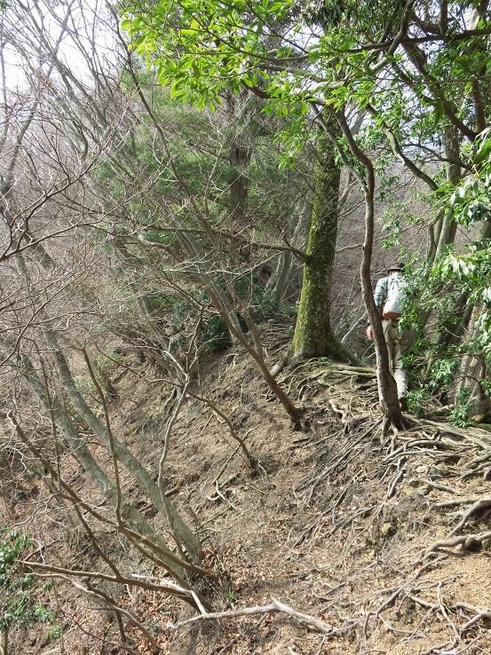 宝尾根から大山三峰山に近づく