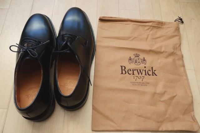 バーウィック(BERWICK)メンズ革靴(ビジネスシューズ)アップの様子