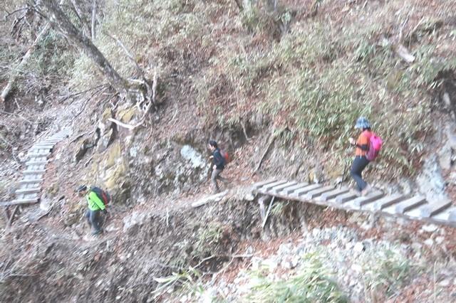 雲取山から三条の湯下山ルートの様子