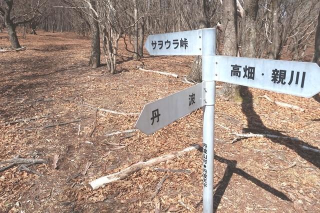丹波天平サオラ峠(サヲウラ峠)・丹波・親川(お祭)の分岐点