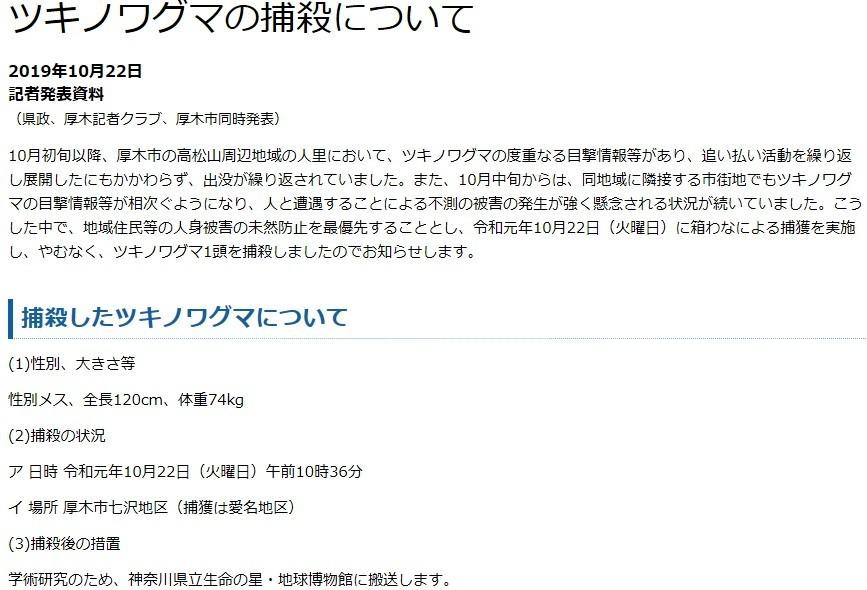 神奈川県熊の捕殺した時の情報