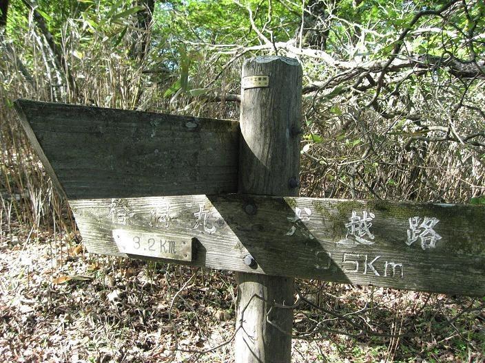 犬越路トンネルの分岐道標