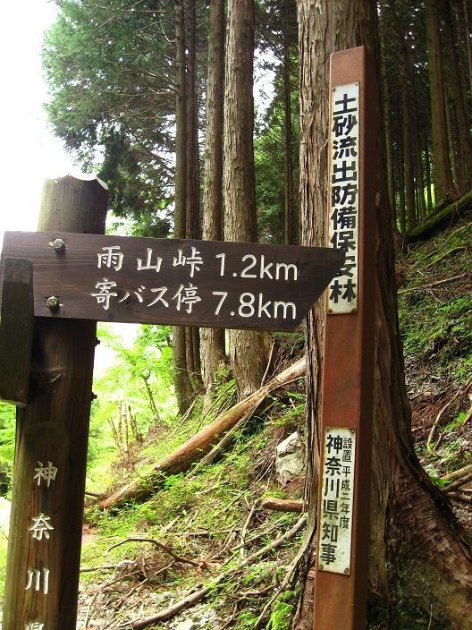 雨山峠入口鍋割山へ向かう登山道