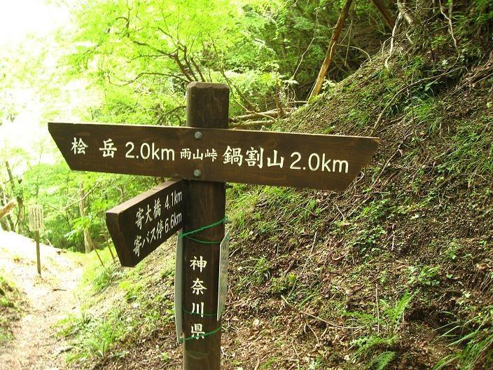 雨山峠分岐から鍋割山