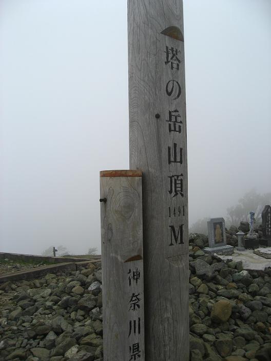 塔ノ岳山頂曇り空の景色