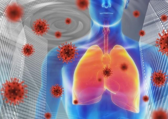 新型コロナウイルス対策と感染予防ウイルスと肺