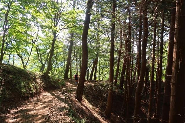 堀山の家の手前ルート上で丹沢チャンプ歩荷