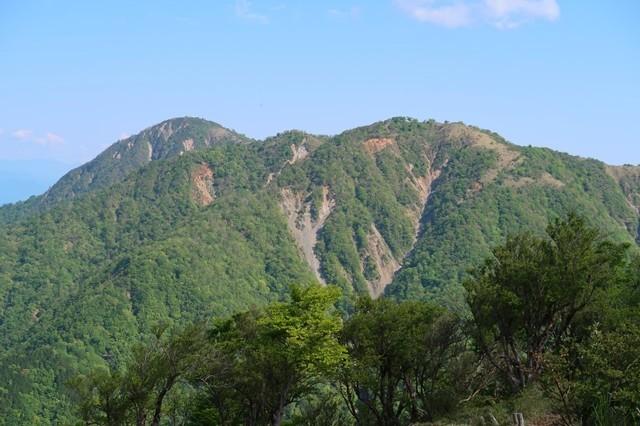 大倉から蛭ヶ岳ピストンの景色