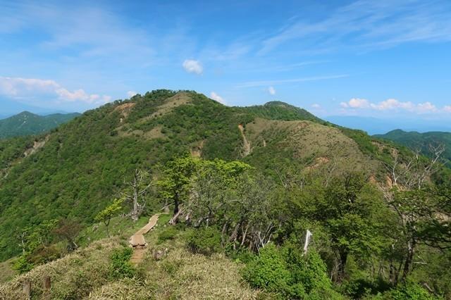 丹沢山から蛭ヶ岳山荘を目指す景色
